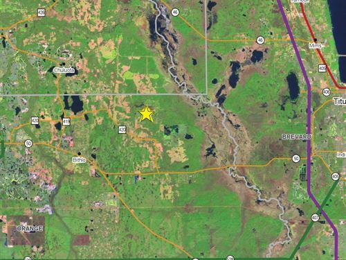 East Orange County Hunting Land : Christmas : Orange County : Florida