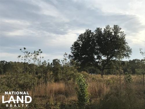 Mudville Home Site : Cross : Berkeley County : South Carolina