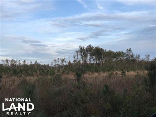 Mudville Homesite : Cross : Berkeley County : South Carolina