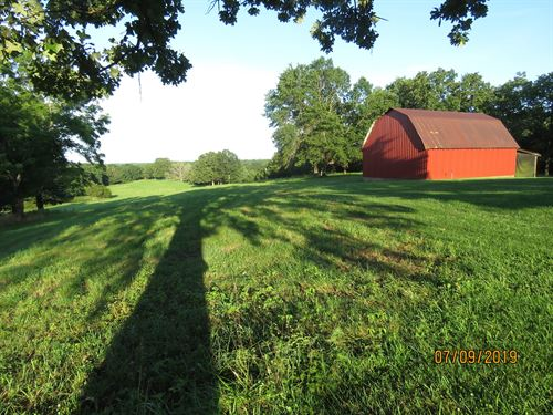 Nice Land For Sale in Ozark County : Wasola : Ozark County : Missouri