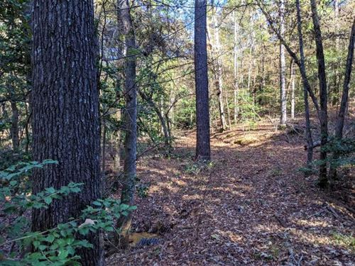 Beautiful 80 Acres in Great Nei : Jacksonville : Cherokee County : Texas