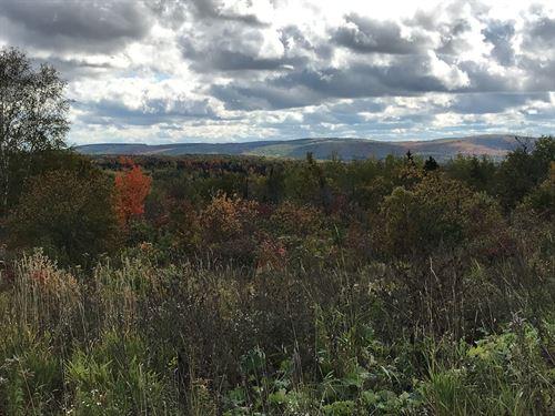 Recreational Farm Land Aroostook : Van Buren : Aroostook County : Maine