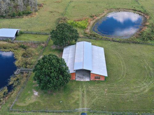 Lane Ranch : Polk City : Polk County : Florida
