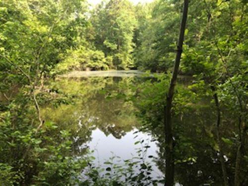 Beautiful Home Site or Hunting : Bowman : Elbert County : Georgia