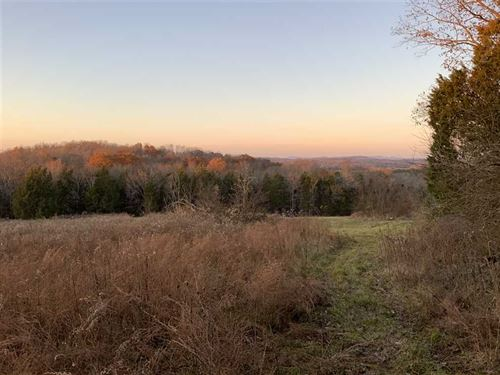 64 Beautiful Acres Views With Grea : Readyville : Rutherford County : Tennessee