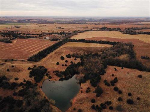 318 Acres of Crp Pasture, Tilla : Zenda : Kingman County : Kansas