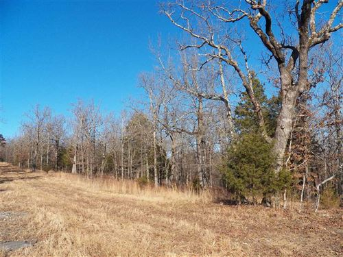 10 Acres / Lakeview / Yellville AR : Yellville : Marion County : Arkansas
