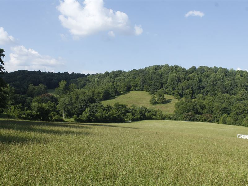 Equestrian Estate : Lewisburg : Marshall County : Tennessee