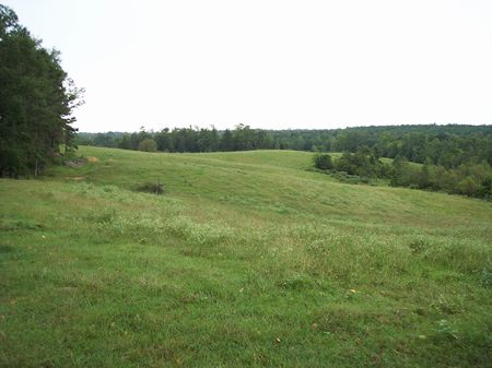 124 Acres With Lake And Creek : Newton : Newton County : Mississippi