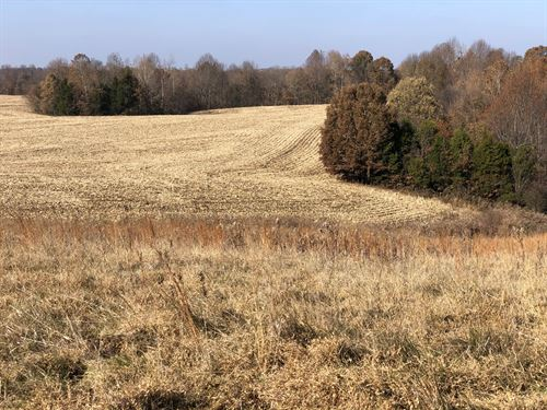 Land Auction Tracts Plus Ag & Const : Beaver Dam : Ohio County : Kentucky