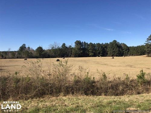 Thomastown Pasture & Timber Land : Kosciusko : Leake County : Mississippi