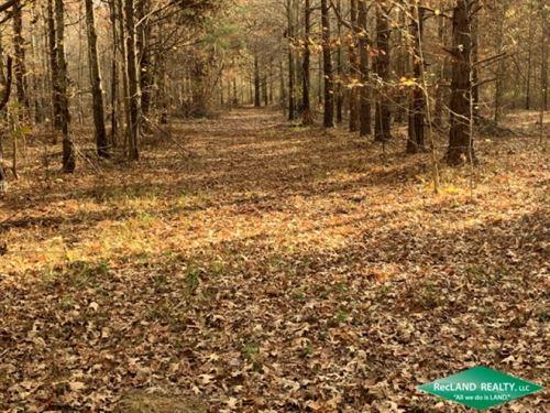 100 Ac, Crp Hunting & Income : Gilbert : Franklin Parish : Louisiana