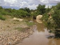 163 Acre Ranch With Creek Frontage : Heber : Navajo County : Arizona