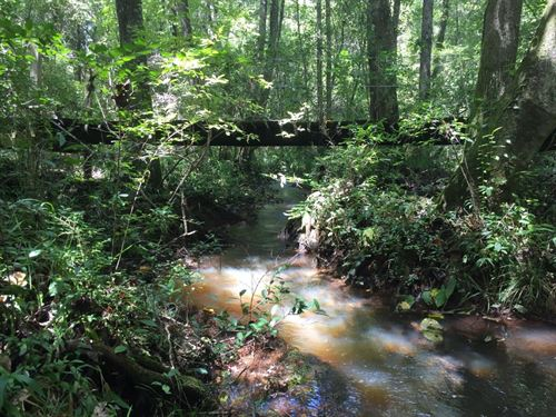 Woods, Creek, Home Near Enterprise : New Brockton : Coffee County : Alabama