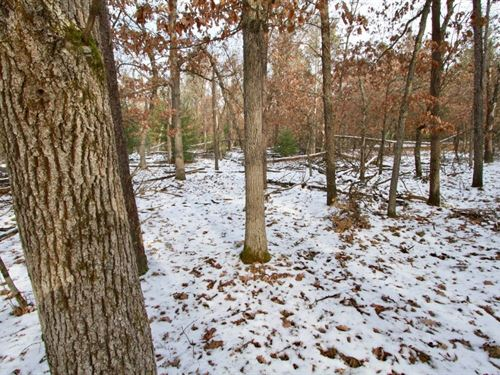 Buildable Lot 3 Within City Limits : Friendship : Adams County : Wisconsin