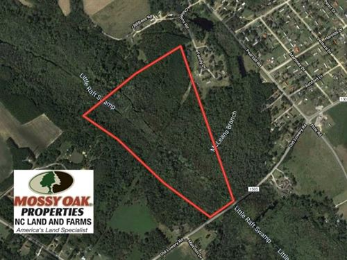 64.75 Acres of Hunting Land For Sa : Red Springs : Robeson County : North Carolina