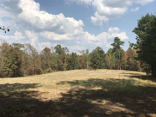 McKinnon Tract : Clanton : Chilton County : Alabama