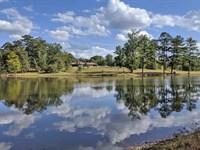 Headwater Tree Farm : Ramer : Montgomery County : Alabama