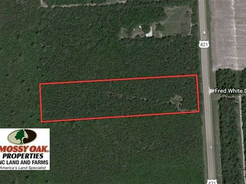 5 Acres of Residential And Timber : Currie : Pender County : North Carolina