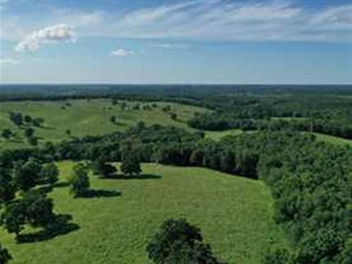 160 Acre Cattle Farm Warsaw, MO : Warsaw : Benton County : Missouri