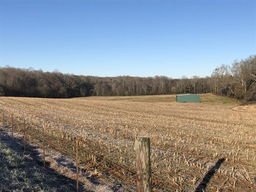Townville Farm & Crop Land 1 : Townville : Anderson County : South Carolina