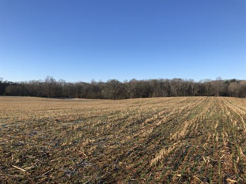 Townville Farm & Crop Land 3 : Townville : Anderson County : South Carolina