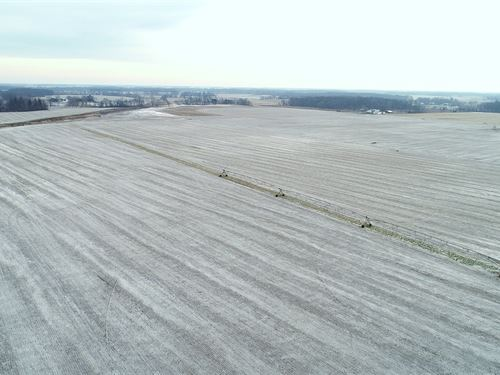 Land Auction in Indiana : Winamac : Pulaski County : Indiana