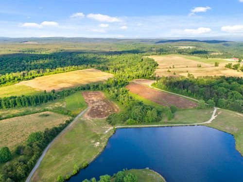 45 Acres With Stocked Lake : Soddy Daisy : Bledsoe County : Tennessee