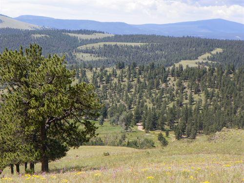 Ranch CO Mtn, Hunting, Views, Live : Saguache : Colorado