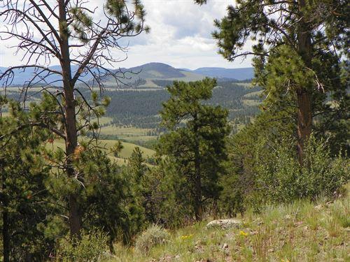 Large Acreage CO Mtn Hunting Ranch : Saguache : Colorado