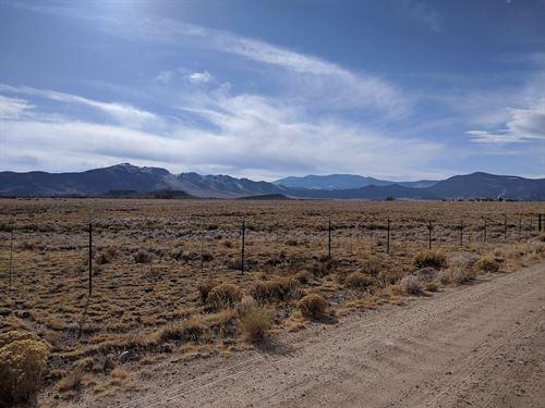 Horse Rides, Atv, Snowmobiles Land : Saguache : Colorado