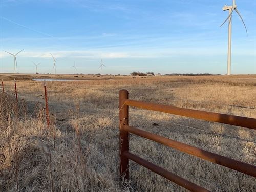80 Acres N, Central Okla Hunting : Ponca City : Kay County : Oklahoma