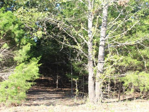 2 Lots Bordering Corps Lazy Acres : Protem : Taney County : Missouri