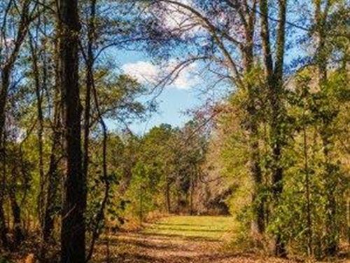 Belcher Branch : Statesboro : Bulloch County : Georgia
