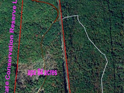Large Parcel With Forest Frontage : Winona : Shannon County : Missouri