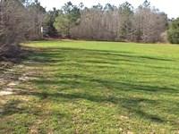 God's Country Farm Tract : Glenwood : Pike County : Alabama