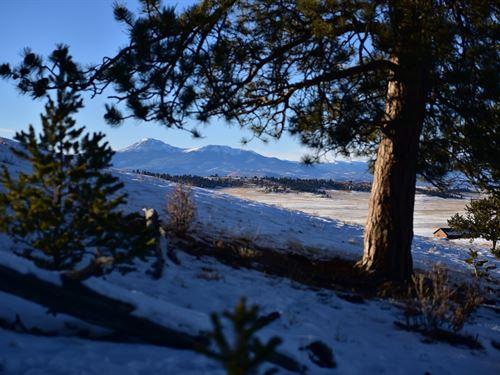 Trees and Million $ Views, 6 Acres : Hartsel : Park County : Colorado