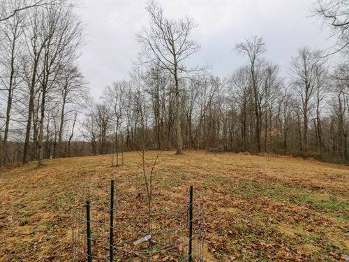 Leith Run Rd, 80 Acres : New Matamoras : Washington County : Ohio