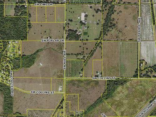 25 Acre Ranch Arcadia, Florida : Arcadia : Desoto County : Florida