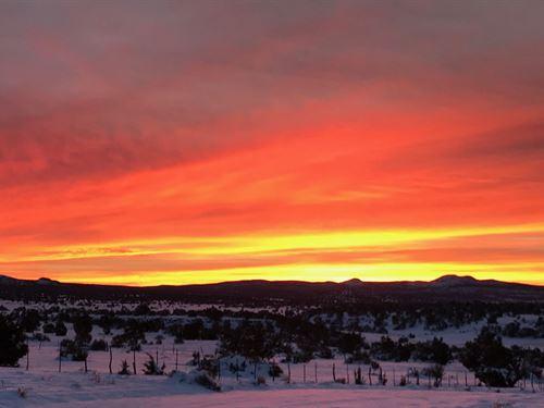 Northern AZ Homestead With Power : Saint Johns : Apache County : Arizona