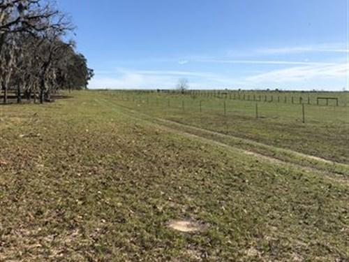 Park-Like 43 Acres : Floral City : Citrus County : Florida