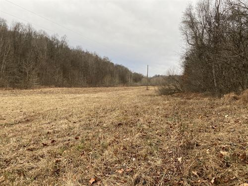 947 Acres of River Front : Marion : Crittenden County : Kentucky