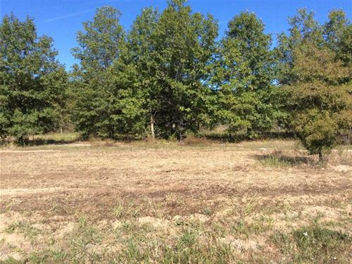 Boeuf River Short End Road Lots : Columbia : La Salle Parish : Louisiana