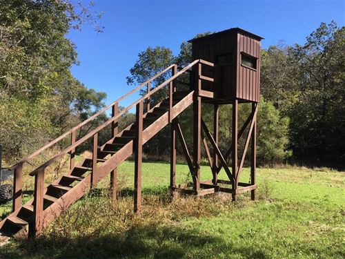 Ladder Stand Bottoms : Willow Springs : Texas County : Missouri