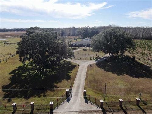 Townsend Homestead : Mayo : Lafayette County : Florida