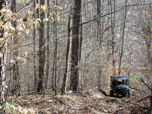 Exceptional Hunting and Recreation : Sneedville : Hancock County : Tennessee
