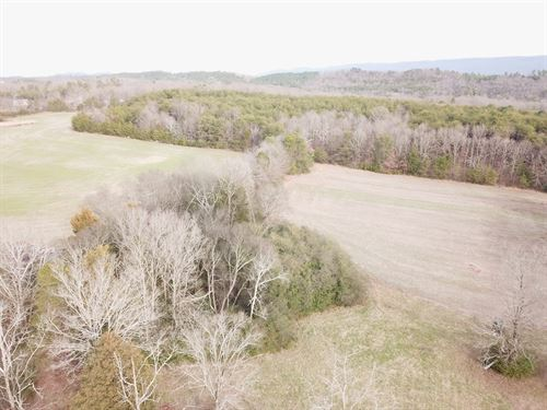 85+/-Acre Beautiful Farm & Wooded : Etowah : McMinn County : Tennessee