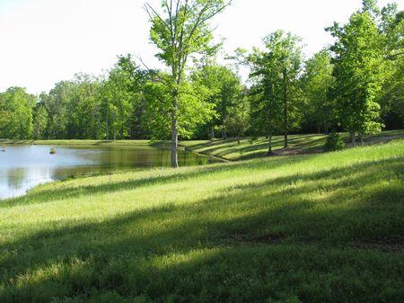 Buena Vista 51 : Beatrice : Monroe County : Alabama