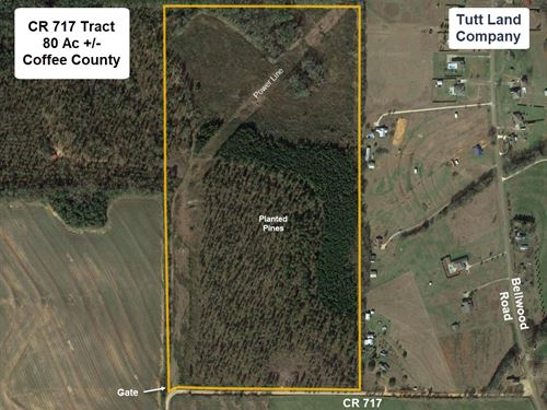 Wooded Tract Near Enterprise : Enterprise : Coffee County : Alabama