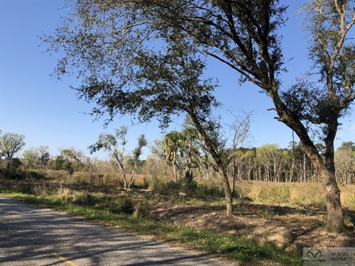 Dale 10 Ac Open Land Rural : Early Branch : Beaufort County : South Carolina